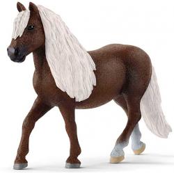 Egua Saddlebred 13912.