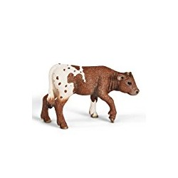 Calf Texas (146647)