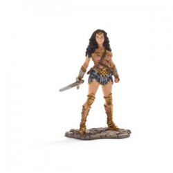 Super hero Wonder Woman 22527