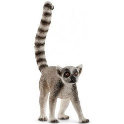 Lemur (14827)
